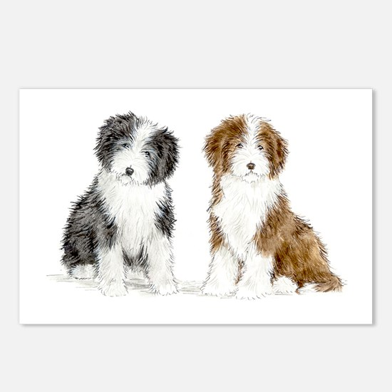 Cute Bearded collie Postcards (Package of 8)