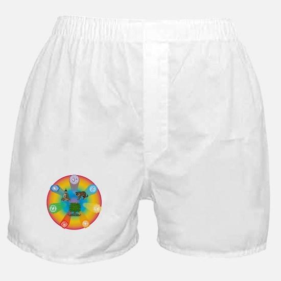 Reiki Energy Wheel Boxer Shorts