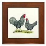 Dominique Chickens Framed Tile