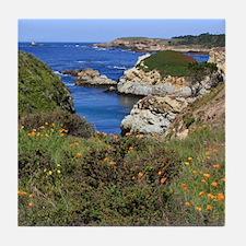 Point Lobos Tile Coaster