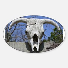 Bull Skull Oval Decal