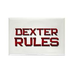 dexter rules Rectangle Magnet (10 pack)