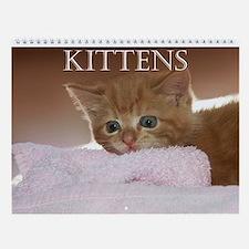 Kittens 2013 Wall Calendar