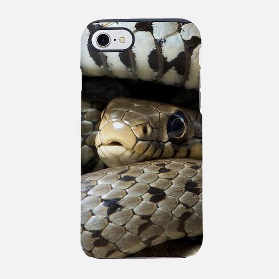 Snake iPhone 7 Tough Case