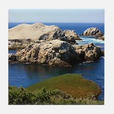 Point Lobos Bird Island Tile Coaster
