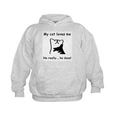 Sarcastic Cat Lover Gift Hoodie