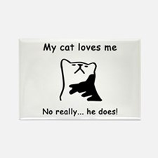 Sarcastic Cat Lover Gift Rectangle Magnet
