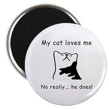 Sarcastic Cat Lover Gift Magnet