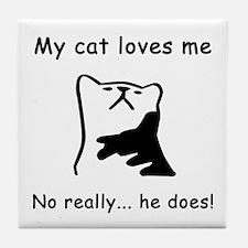 Sarcastic Cat Lover Gift Tile Coaster