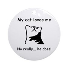 Sarcastic Cat Lover Gift Ornament (Round)