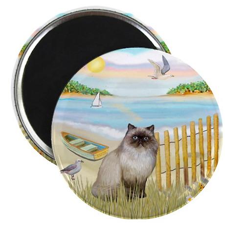 "Rowboat / Himalayan Cat 2.25"" Magnet (10 pack"