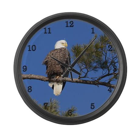 Mature Bald Eagle Large Wall Clock