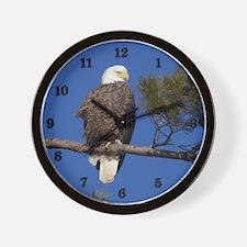 Mature Bald Eagle Wall Clock