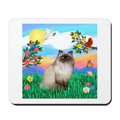 Bright Life / Himalayan Cat Mousepad