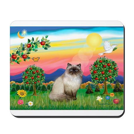 Bright Country / Himalayan Cat Mousepad