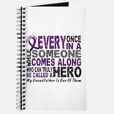 HERO Comes Along 1 Grandfather PC Journal
