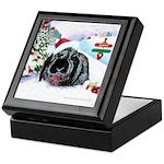 Inky's Winter Keepsake Box