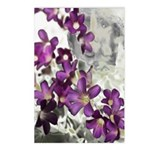 Photo montage Postcards (Package of 8)