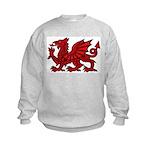 Red Welsh Kids Sweatshirt