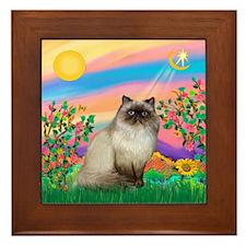 Day Star / Himalayan Cat Framed Tile