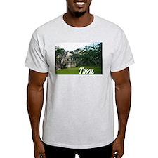 Tikal Courtyard Ash Grey T-Shirt
