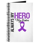Pancreatic Cancer Sister Journal
