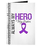 Pancreatic Cancer Sister Journal