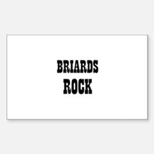 BRIARDS ROCK Rectangle Decal