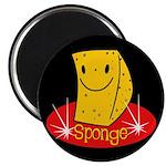 Sponge Magnet