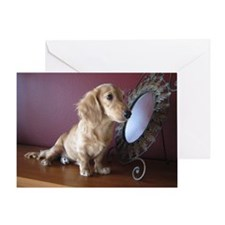 Cream Doxie Greeting Card