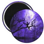Celestial Night Magnet