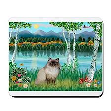 Birches / Himalayan Cat Mousepad