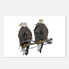 TWIN EAGLES Postcards (Package of 8)