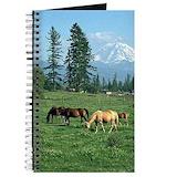 Horse Journals & Spiral Notebooks