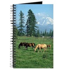 Beautiful Horses Landscape ~ Journal