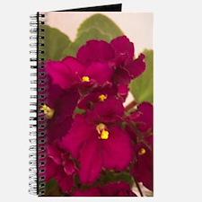 Opt. Little Maya Journal