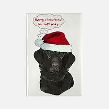 Merry Christmas, love Santa P Rectangle Magnet