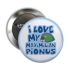 "Kawaii Maximilian Pionus 2.25"" Button"