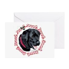 Black Labrador  Greeting Cards (Pk of 10)