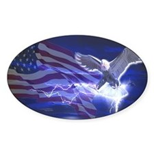 Eagle Storm Oval Decal