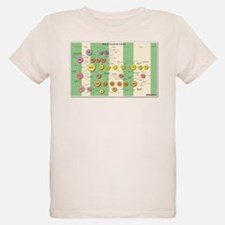 Map of Complexity T-Shirt