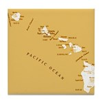 Hawaiian island topical map Tile Coaster