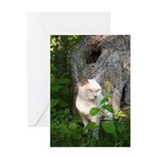 Unique Daybreakers Greeting Card