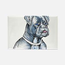 Blue Dog Magnets