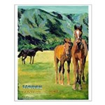 Spring at The Ranch Small Poster