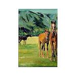 Horses Rectangle Magnet (100 pack)