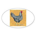 Dominique Chicken Hen Oval Sticker (50 pk)