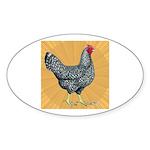 Dominique Chicken Hen Oval Sticker (10 pk)