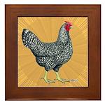 Dominique Chicken Hen Framed Tile