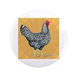 """Dominique Chicken Hen 3.5"""" Button (100 pack)"""